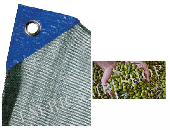 rete per raccolta olive 8x10 tessuto antispina e antistrappo